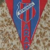 Fanion Strungul Arad