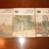 Antologie de proza rusa, 3 vol. - Carte Antologie