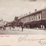 Romania, Sighetul Marmatiei, carte postala circulata 1900: Centru, animat