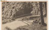 POIANA BRASOV (Stalin) - Drumul vechi