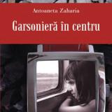Garsoniera in centru - Antoaneta Zaharia - Roman, Polirom