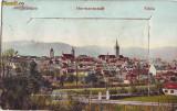 Bo124  Sibiu vedere Leporello circulata