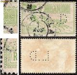 A868 1903 5 bani Caisorii perforat L.D unicat pe net ff rar !, Sarbatori, Stampilat