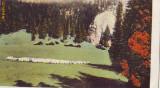 B8010 Busteni Vedere spre Valea Ialomitei circulata