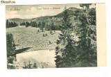 442. Colibita - lacul zanelor