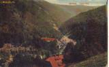 B8350 Sinaia Valea Rea  circulata1911