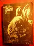 L.ST.REBREANU- CRESTEREA IEPURILOR DE CASA
