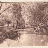 Vedere din Delta Dunarii (interbelica)