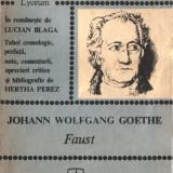 JOHANN WOLFGANG GOETHE - FAUST TEXTE COMENTATE - Roman