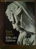 2337 karel Schultz Kobe Zart Fajdalom, 1976