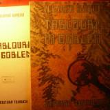 ILEANA RATIU - TABLOURI IN GOBLEN - Tapiterie Goblen