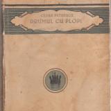 Cezar Petrescu / Drumul cu plopi - editia I, 1924 - Carte Editie princeps