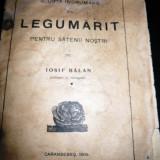 Iosif Balan, Scurta indrumare de legumarit, 1909 - Carte de lux