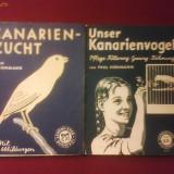 Paul Hohmann Unser Kanarienvogel si Kanarienzucht