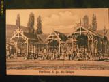 SALISTE - Pavilionul de joc