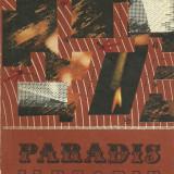 Paradis iluzoriu de Ion Suceava - Roman