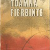 Toamna fierbinte de Ion Lancranjan - Roman