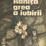 Ranita grea a iubirii de Vasile Baran - Roman