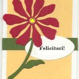 Felicitare Handmade (Lucrata manual)