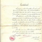 LOT ACTE  JUDECATORESTI 1903-1925