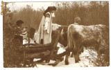 723. Port popular dupa lemne iarna cu sania