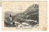 752. Sasca montana 1902