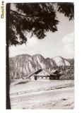 """CP189-41 Predeal -Cabana ,,Poiana Secuilor"""" -RPR -carte postala circulata 1965"""
