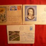 3 Plicuri -Intreguri Postale -Gradini Botanice -Cluj, Bucuresti - Plic Papetarie