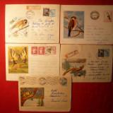 10 Plicuri -Ilustrate -Intreguri - FAUNA - 1961- 1975 - Plic Papetarie