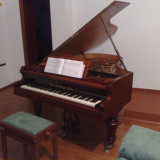 pian Karl HAMBURGER Wien, multiplu medaliat, inscriptionat 1877 - SUPERB - perfect functional, impecabil