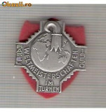 CIA 213 Medalie   ( insemn Schwingfest) Basel 1950 (lupte -Wrestling )(Elvetia) -dimensiuni, circa 28X28 milimetri