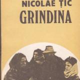 NICOLAE TIC - GRINDINA - Roman, Anul publicarii: 1987