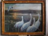 REDUCERE 50 LEI! TABLOU ELVETIAN 3D DIN ANII 70