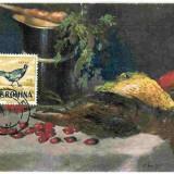 Ilustrata maxima Fauna - Pasari - Fazan