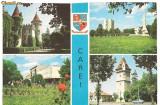 carte postala(ilustrata)-CAREI-Imagini din oras