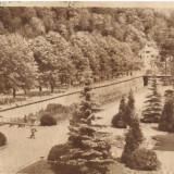 SLANIC-MOLDOVA-Parcul Bailor Centrale