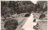 Carte postala-SLANIC -MOLDOVA-Vedere din parc