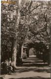 R 9239 Republica Populara Romana Buzias vedere din parc circulata