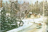 """CP199-62 Sinaia. Vila ,,Albina"""" -carte postala, circulata 1984 -starea care se vede"""