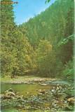 CP200-29 Valea Slanicului la Slanic-Moldova -carte postala, circulata 1976 -starea care se vede
