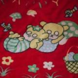 Paturica - Lenjerie pat copii