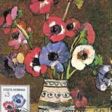 Ilustrata maxima FLORA - Anemone