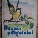 PATANIA PITIGOIULUI - EUGEN B. MARIAN - carte pentru copii - Carte educativa