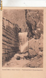 B25159 Izvorul Bailor (Valea Vinului)