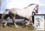 Carte maxima rasa de cai Lipitan
