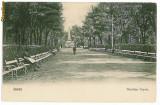 513 - IASI, Copou garden - old postcard - unused - 1904, Necirculata, Printata