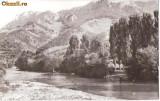 CP207-82 Muntii Apuseni -Valea Ariesului -RPR -carte postala necirculata -starea care se vede