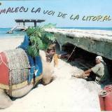CP208-62 Salamalecu la voi de la Litoral, mai! (Smille Collection) -carte postala circulata 2001 -starea care se vede