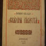 GEORGE VALSAN-GRADINA PARASITA VERSURI-CLUJ 1925-PRIMA EDITIE
