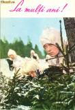 Ilustrata sport - carte postala militara, solodati vanatori de munte , camuflaj de iarna